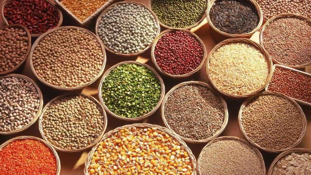 Se incrementa en 66 por ciento comercialización de granos bajo Agricultura por Contrato
