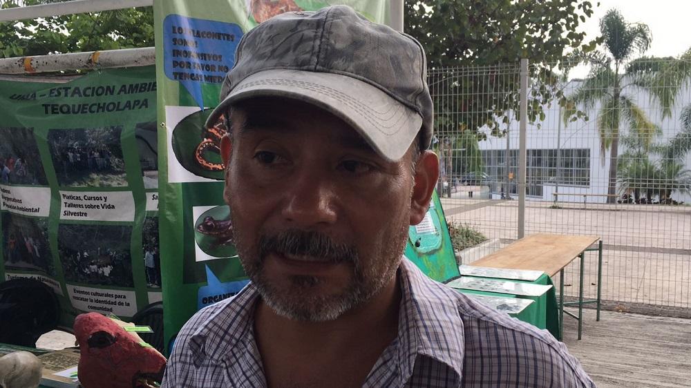 En México no se destinan recursos para evitar la extinción de fauna silvestre