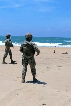 Autoridades federales resguardan campamentos tortugueros en Veracruz