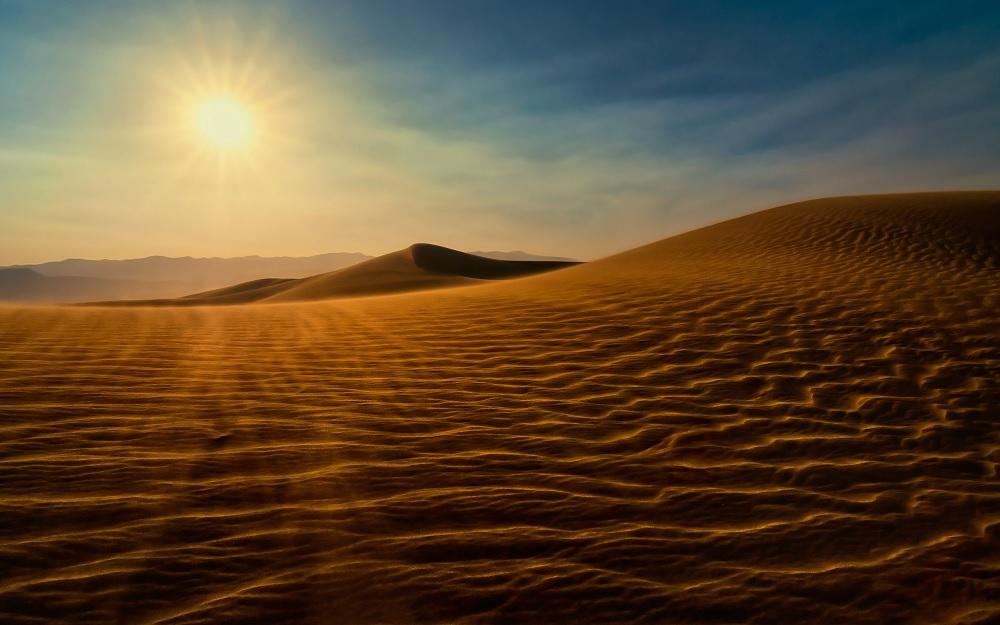 Expertos usan técnica para crear materiales y fertilizantes inspirados en el desierto