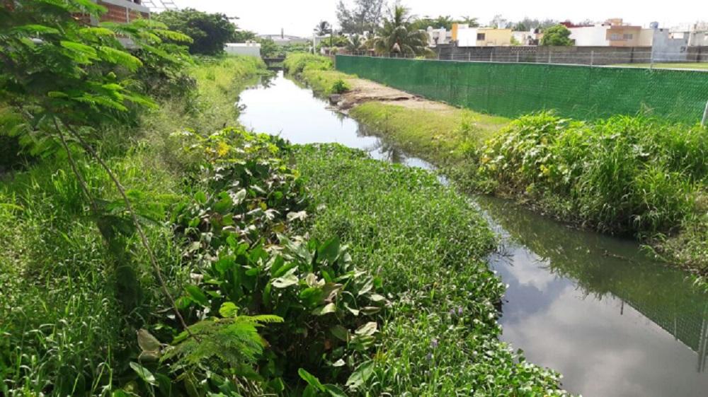 Exigen trabajos de limpieza y desazolve del canal «La Zamorana»