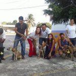 Continúa programa de adopción de perros y gatos en el municipio de Veracruz