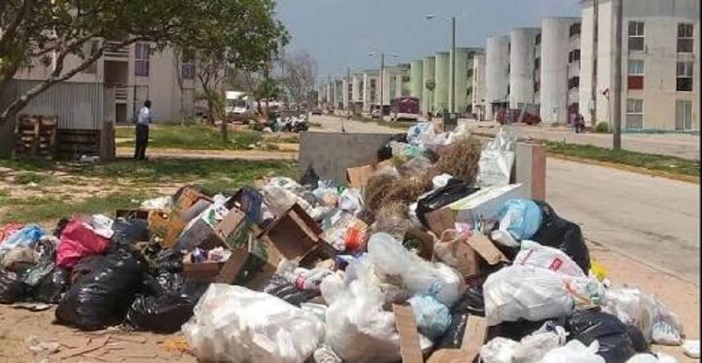 Permitido revisar basura para multar a quienes la saquen fuera de horario