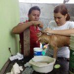 Dejando huellas, un hogar para animales maltratados en Tierra Blanca