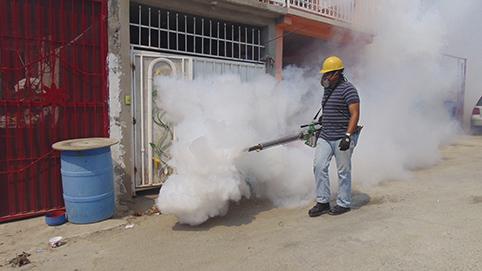 En Veracruz se presentan 30 casos de dengue por cada 100 mil habitantes