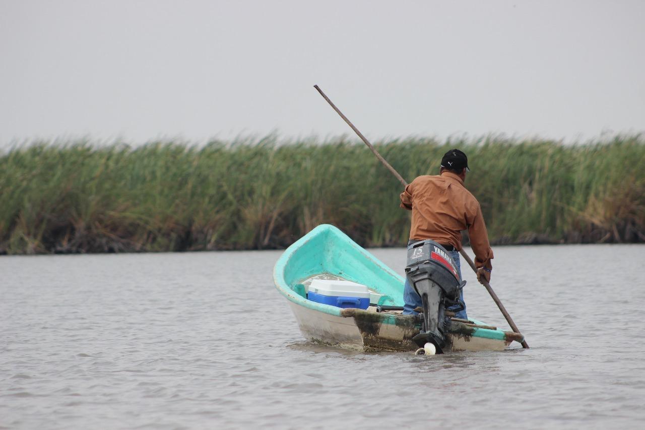 Pescadores de Pánuco esperan obtener apoyos de la Sedarpa