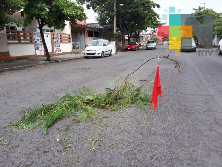 Hundimiento en centro de Veracruz ponen, peligro para transeúntes y automovilistas