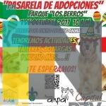 En Xalapa realizarán pasarela de adopción de mascotas