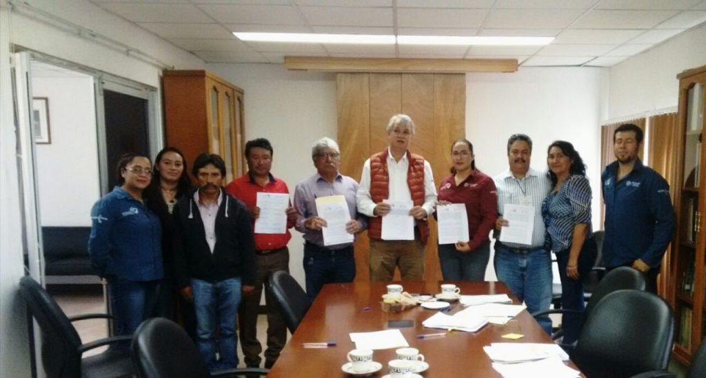 Intensifica gobierno federal la siembra de Cedro y Pino en Veracruz