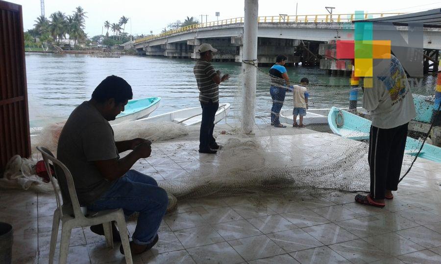 Caería actividad pesquera por aumento de frentes fríos