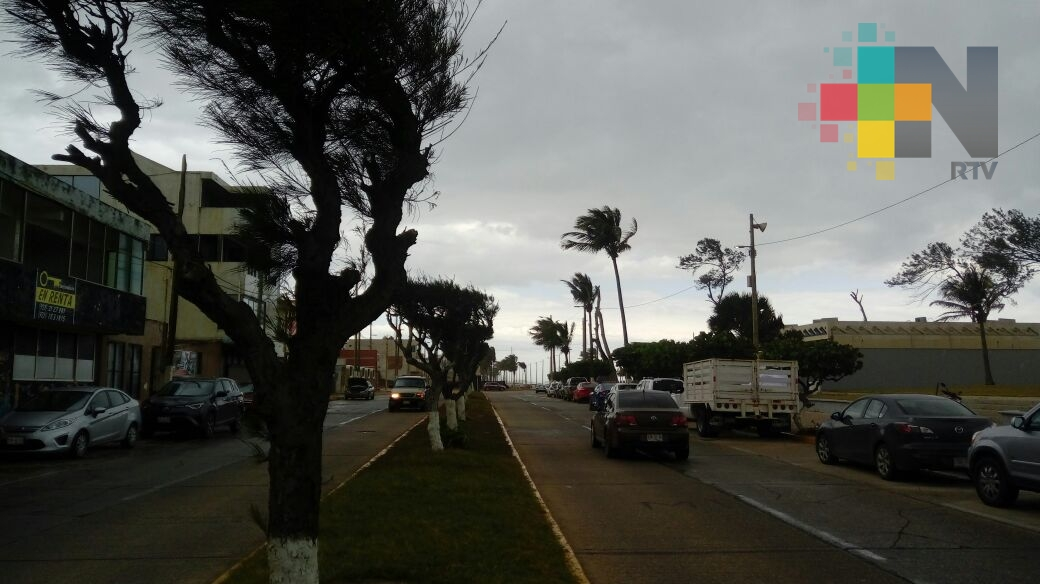 Saldo blanco deja FF 14 en el sur de Veracruz