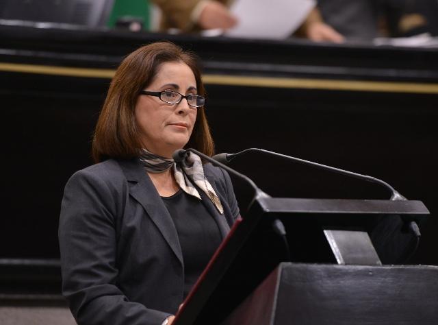 Diputada independiente propone crear Comisión Permanente de Energía y Recursos Renovables