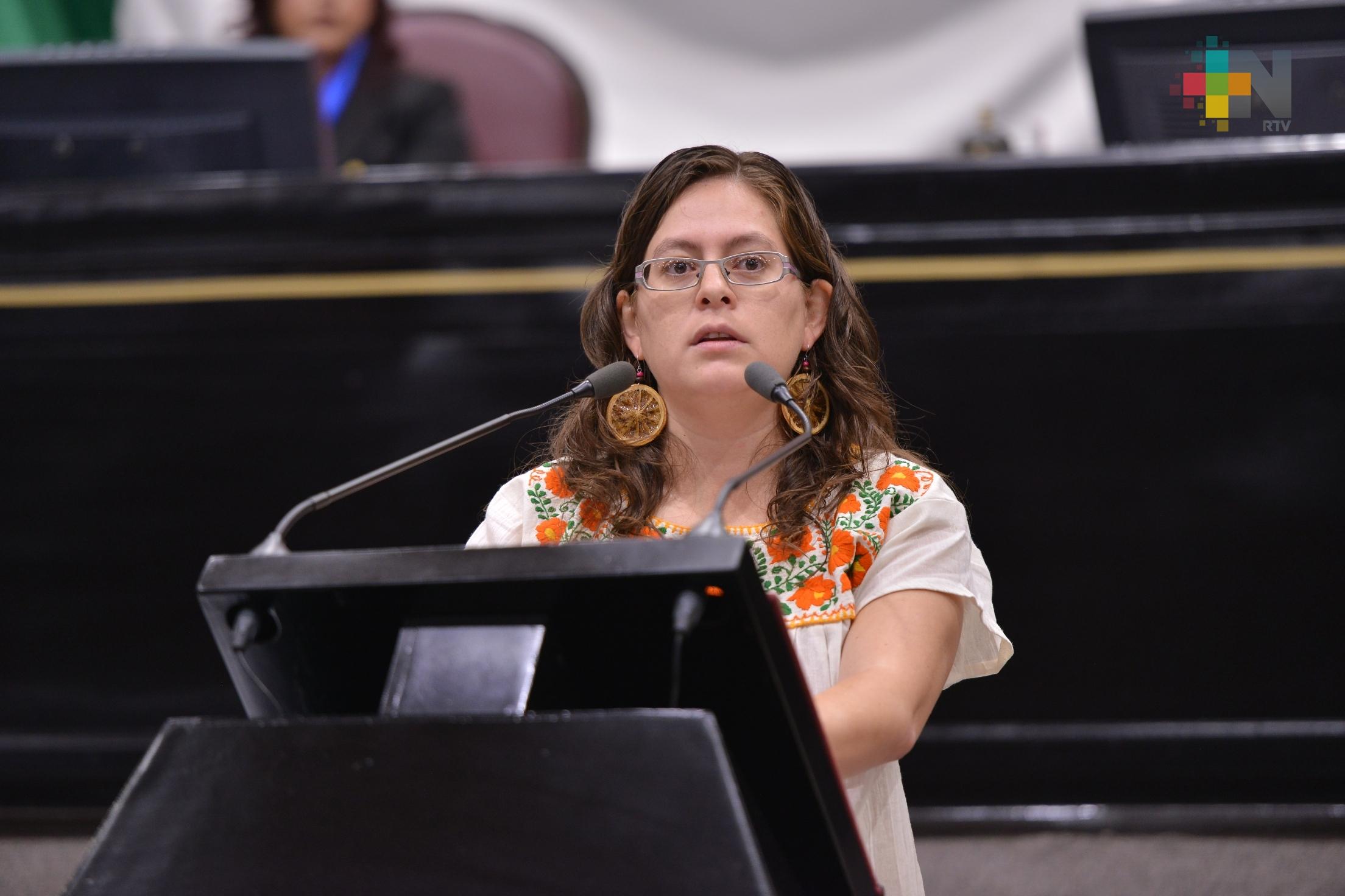 Expone Tanya Carola propuesta para respetar los derechos sexuales y reproductivos
