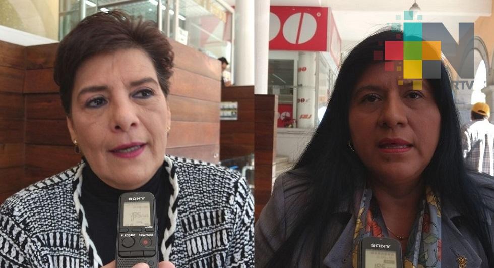 Irrespetuosos alcaldes electos de Morena al no firmar convenio de seguridad: Diputadas