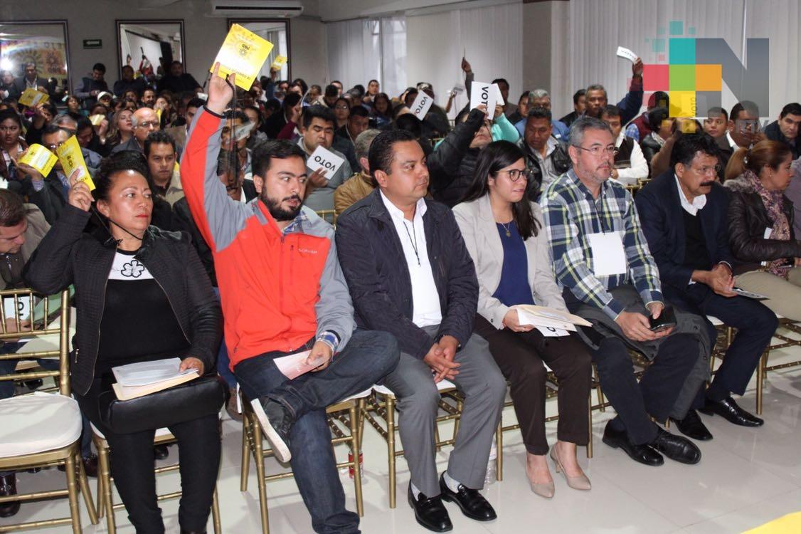 Aprueba PRD método de selección de candidatos para elección de 2018 y coalición con otros partidos