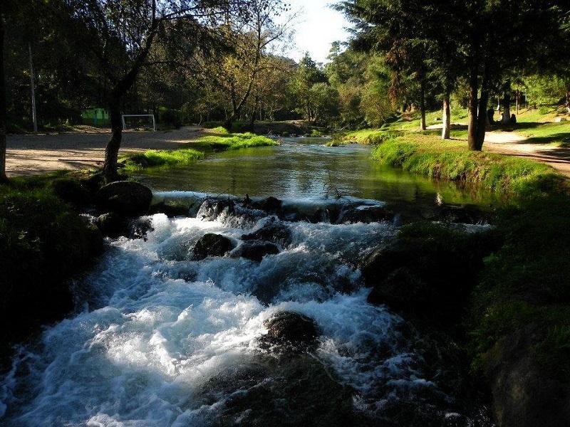 Sedema da mantenimiento a Reserva Ecológica Pancho Poza, ubicado en Altotonga