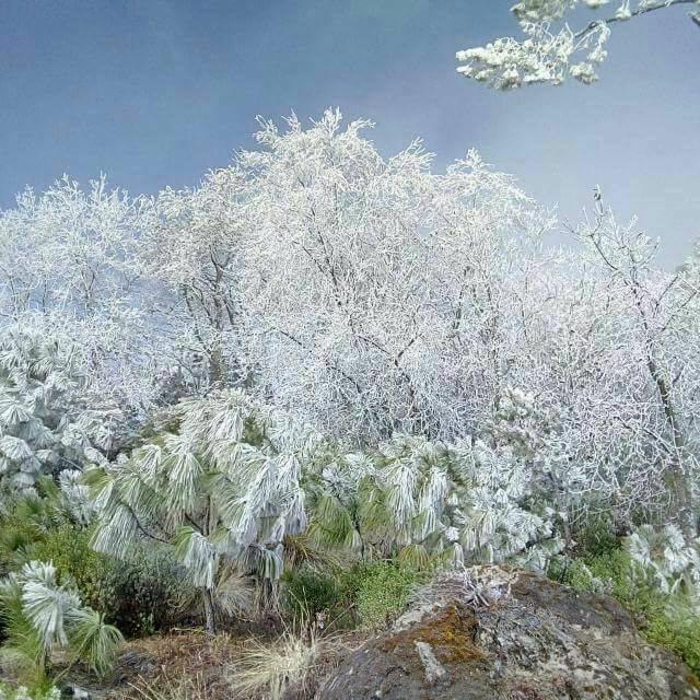 Frío afecta a 36 localidades de Las Vigas