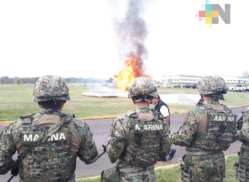 En Veracruz incineran 452 kilos de cocaína