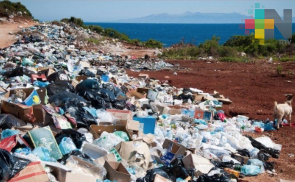 Investigadora identifica bacteria que produce plástico biodegradable
