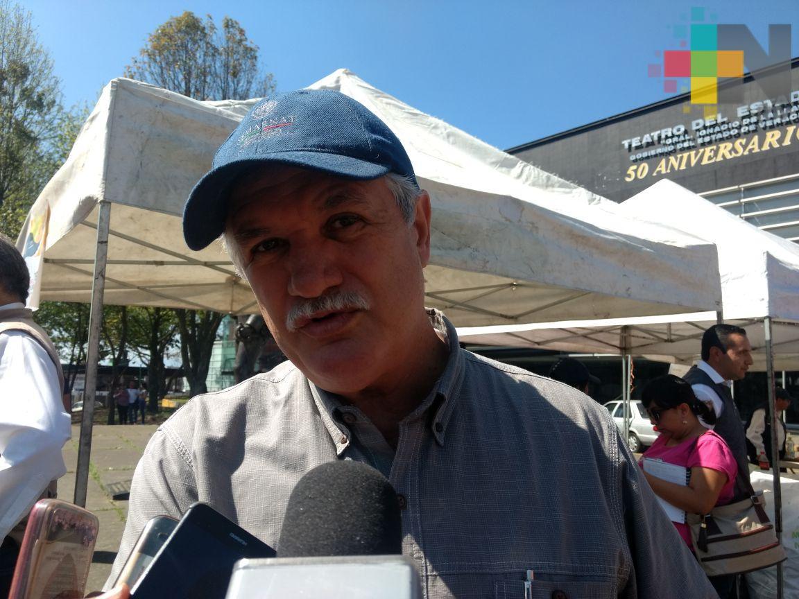 Veracruzanos producen 500 toneladas de basura al día: Semarnat