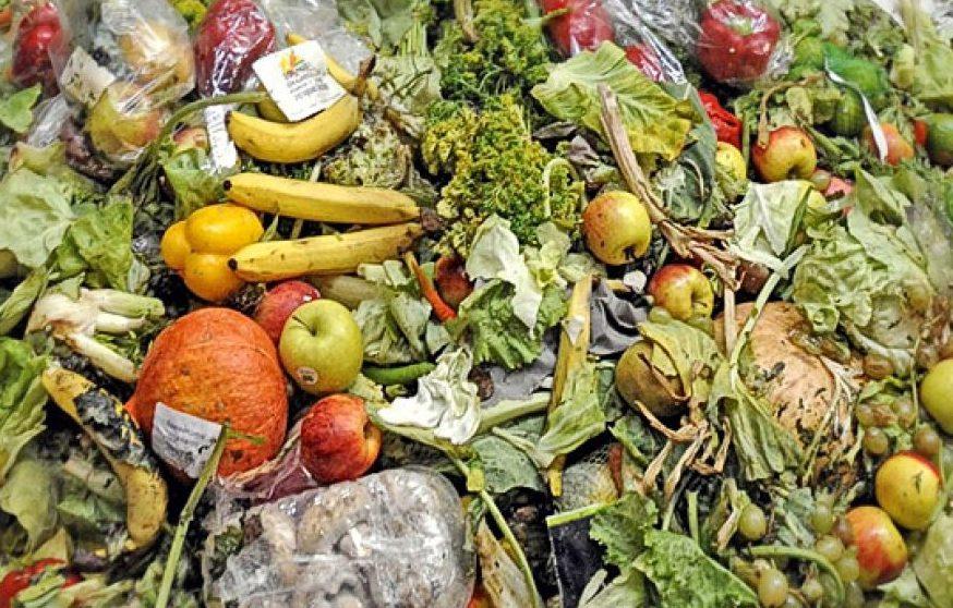 Desarrollan envases biodegradables para alargar vida útil de alimentos