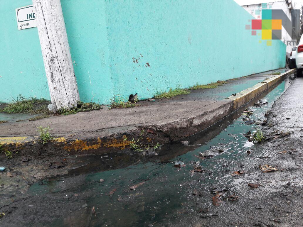 Vecinos piden atender fuga de aguas negras en colonia del municipio de Veracruz