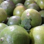 Escasez encarece el limón; alcanzó los 36 pesos