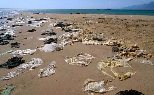 Veracruz será el primer estado a nivel nacional en prohibir el uso de bolsas de plástico