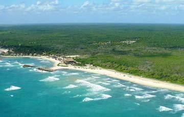 Biosfera del Caribe Mexicano conserva playas tortugueras y humedales