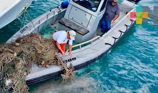 """Extraen redes """"fantasma"""" en el polígono de protección de la vaquita marina"""