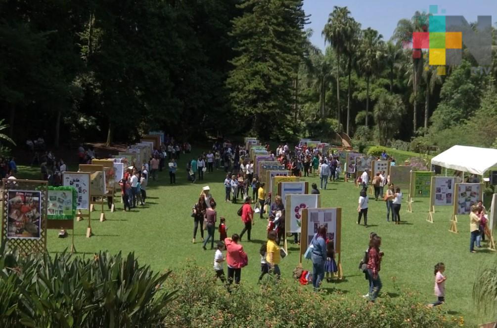 Niños exponen carteles sobre experiencias ambientales en el jardín botánico de Xalapa
