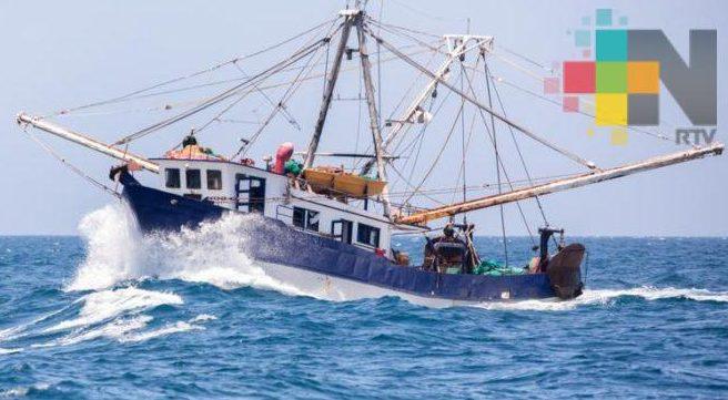 Sader establece veda para pesca de camarón