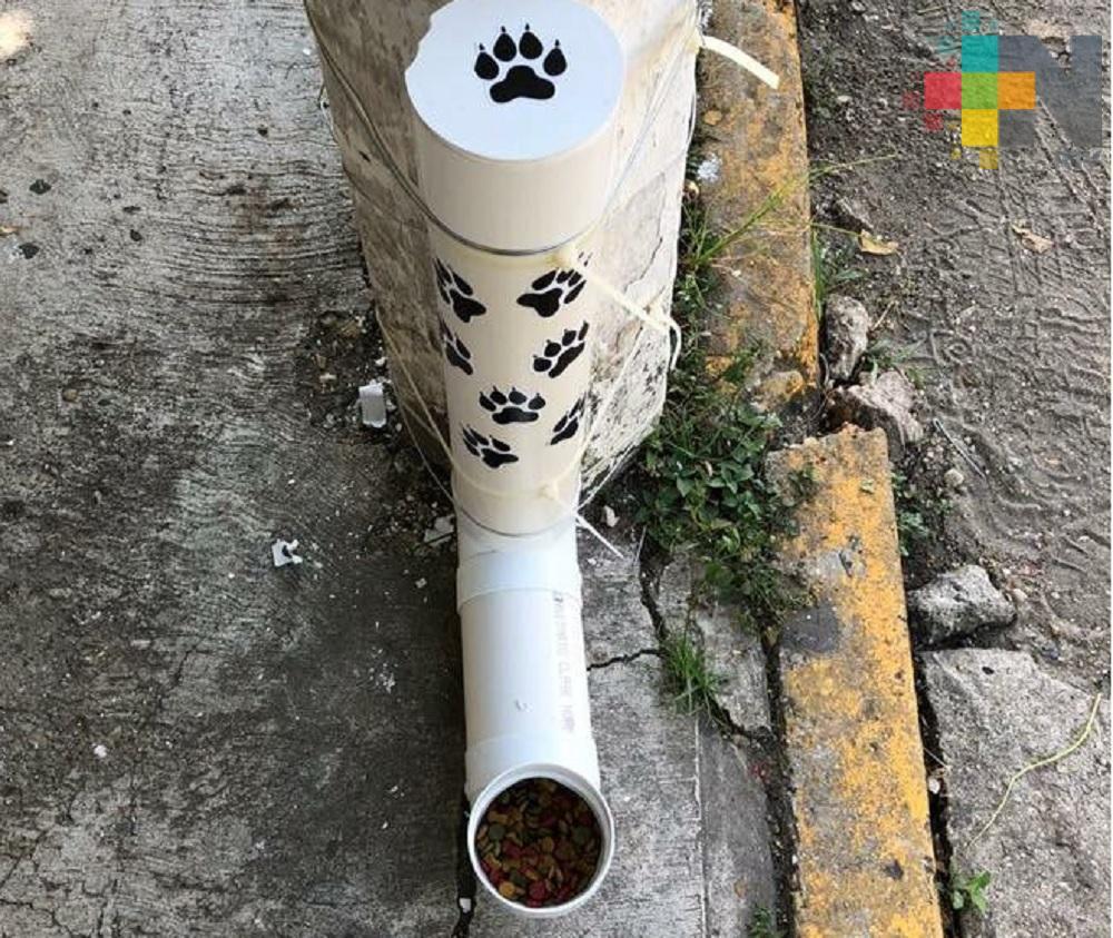 En Nanchital instalan comederos para perros en situación de calle