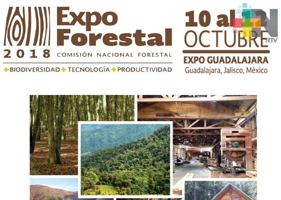 Tecnológicos veracruzanos presentaron proyectos en la Expo Forestal de Guadalajara