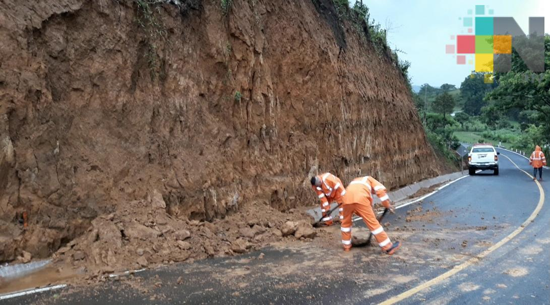 Deslaves y caída de árboles por lluvia en Teocelo y Xalapa