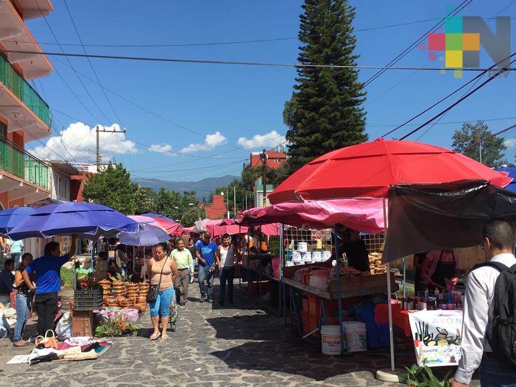 Censan alrededor de 15 tianguis en Xalapa, buscan su reordenamiento