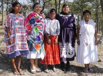 Indígenas deben ser prioridad para la próxima administración federal