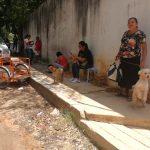En Centro de Control Animal de Coatzacoalcos construirán Centro de Seguridad Integral