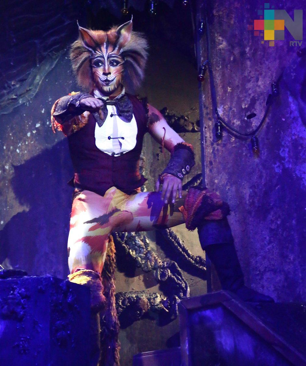 La obra musical Cats vendrá a Veracruz con Yuri como protagonista