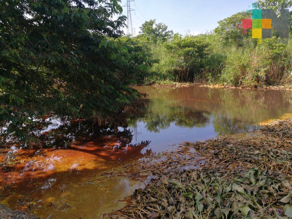 Nanchital suspende clases por efectos de derrame de hidrocarburo en arroyo Tepeyac