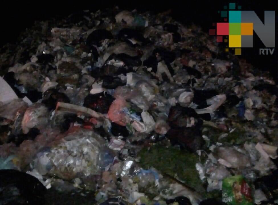 Del total de la basura, en México solo se recicla entre el 5 y 10 por ciento