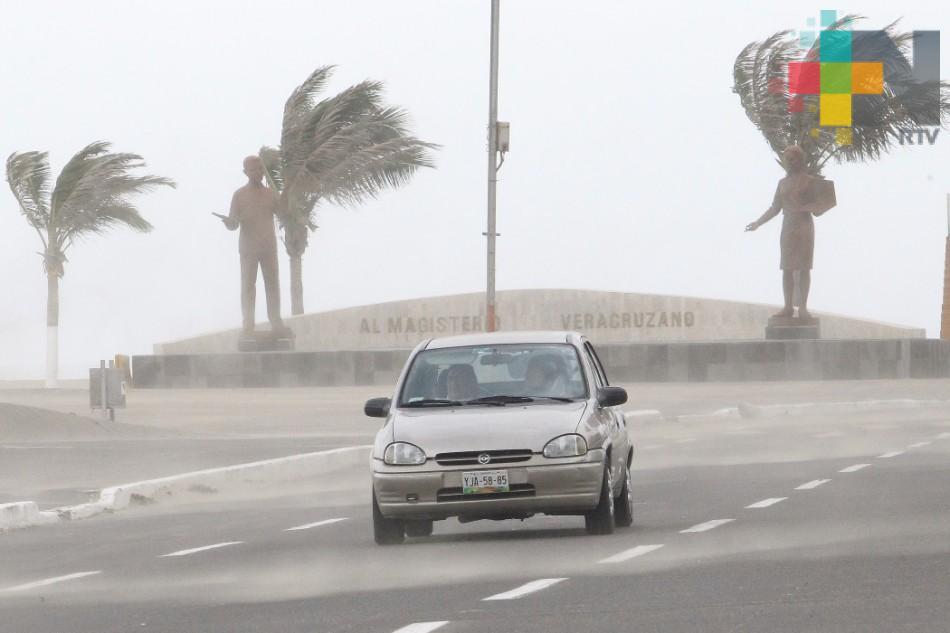 Sin reporte de daños por vientos de 80 km/h en zona Veracruz-Boca del Río