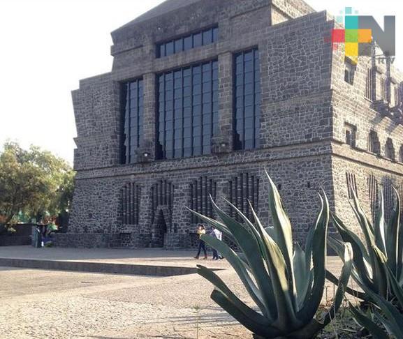 Una noche en el museo Diego Rivera con Airbnb