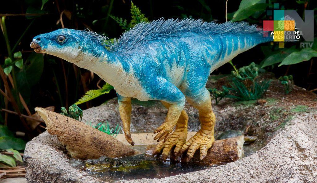 Expertos mexicanos y alemanes reportan primer hallazgo de Parksosaurido