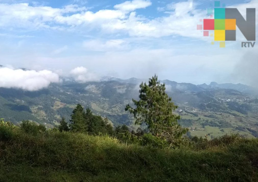 Cielo mayormente despejado; persisten nieblas-lloviznas por la tarde en zona montaña