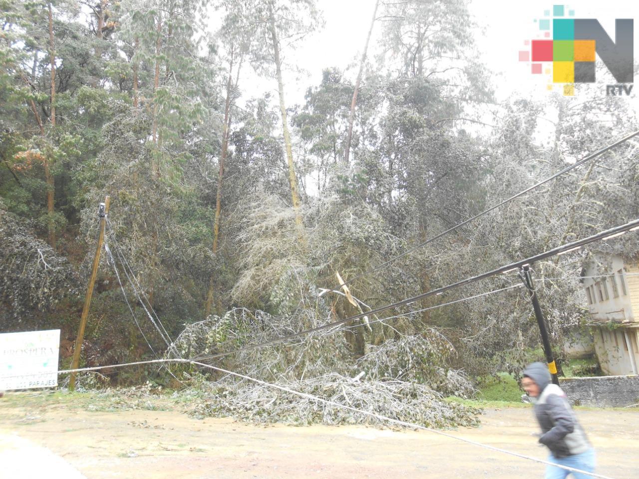 Aguanieve provoca daños en instalación eléctrica y de telefonía de Huayacocotla