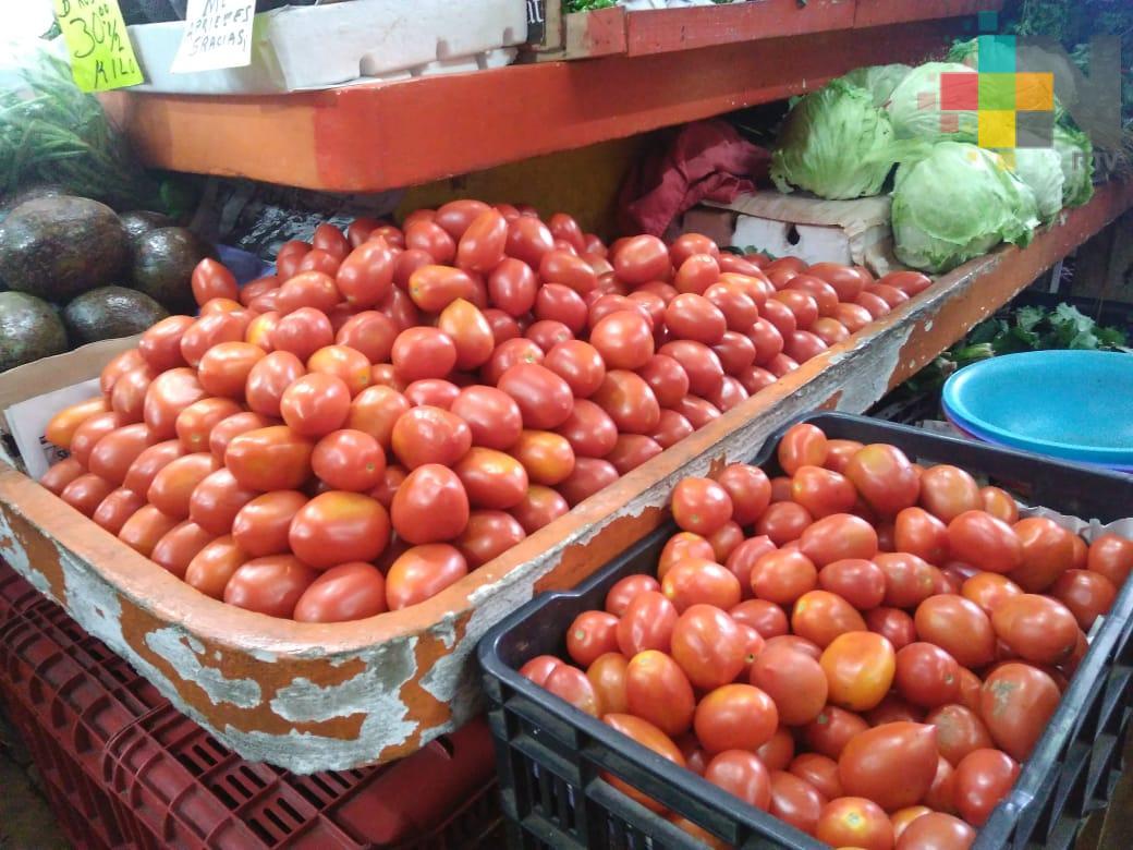 Lluvias y heladas han afectado la producción de jitomate