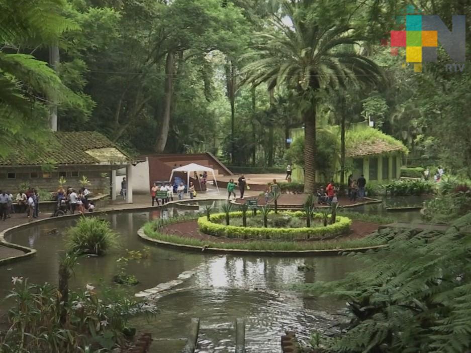 En Xalapa cerrarán parques y habilitarán gimnasios para recibir a personas en situación de calle durante contingencia