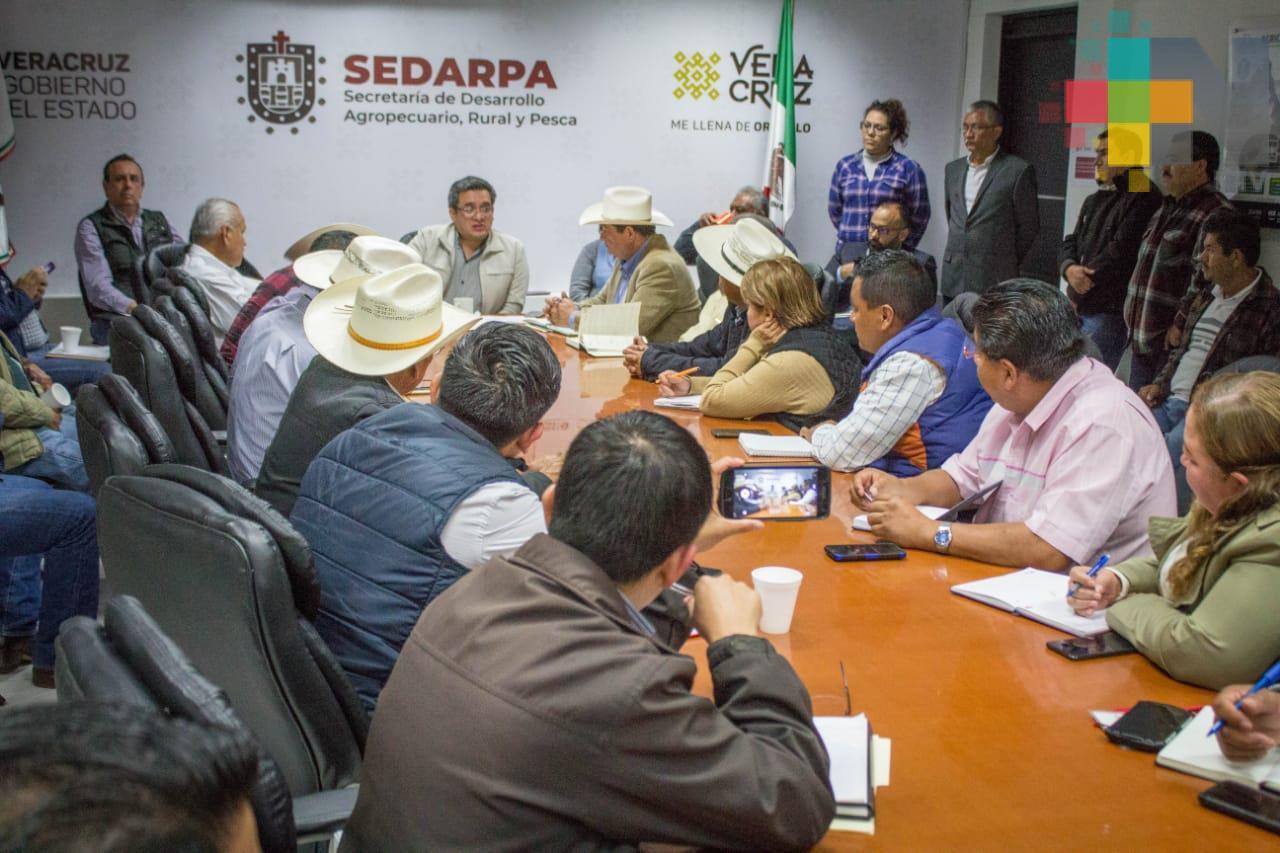 Respaldan cafeticultores inversión de Nestlé en Veracruz