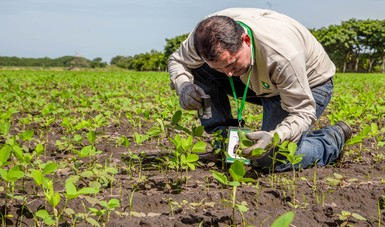 Actualiza Sader programas de capacitación a productores rurales